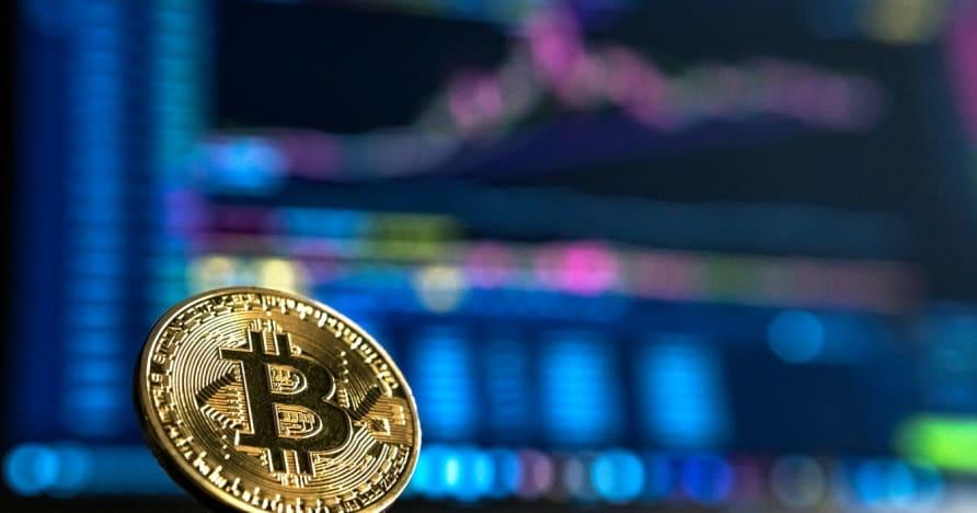คู่มือสำหรับผู้เริ่มต้นสำหรับการพนัน Cryptocurrency
